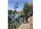 Ankara'da Bir Cennet Mavi Göl