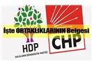 AKP'nin CHP'yi HDP ile Ortaklık Yapıyor Diye Sıkıştırması Terör Kaygısı Değil Siyasi Manevra