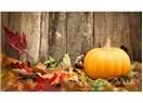 Sonbaharda Doğru Beslen, Yenilen !