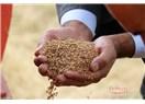 Buğday ve Merhamet Diyarı Anadolu ve Hızla Yaklaşan 3. Dünya Savaşı