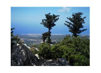Hala Kıbrıs'a gelmedinizmi?