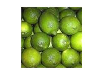 Limon ihracatının dünü, bugünü...