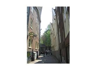 Amsterdam ve zerzevatın haysiyeti