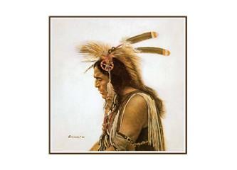 Şaman inancı ve alemler