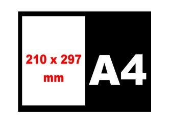 A4 kağıt boyutunun sırrı