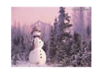 Çok nazlandın gel artık kar !