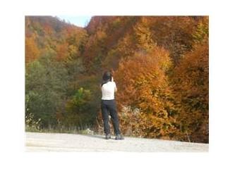 Dağlarına sonbahar gelmiş memleketimin...Güzeldere/Düzce