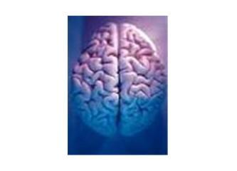 Sahibinden az kullanılmış beyin...