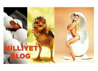 Blog aşkları, nefretleri ve güzellikleri