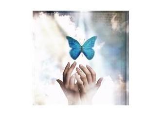 Bir kelebeğe duyulan aşk