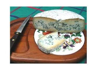 Peynirin manifestosu
