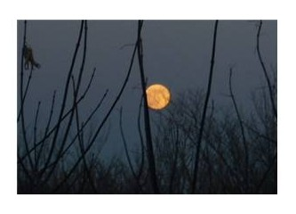 Ayın dünyaya en yakın olduğu gün!