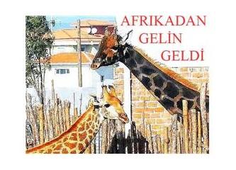 İzmir'de bir Afrikalı güzel