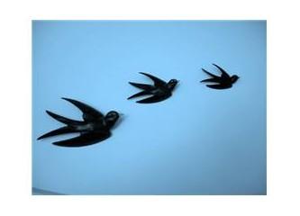 Son halkasındayım, göçmen kuşların...