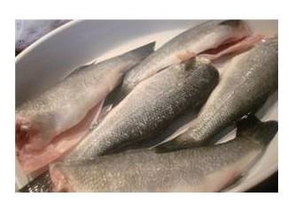 Balık ve rakı ile buluşma...