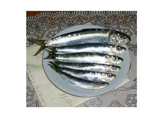 Sardalya balığı tavası nasıl yapılır?