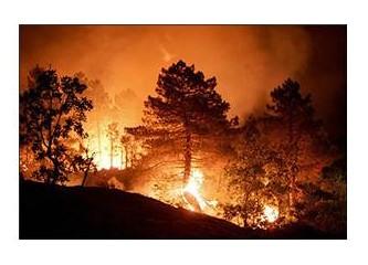 Yunanistan'da ve Türkiye'de orman yangınları; doğayla omuz omuza yok olan insan