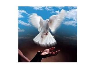 Barışa özlemimdir