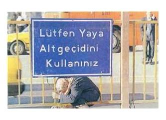 Elli yol sonra Türkiye