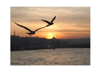 Sevdim seni İstanbul