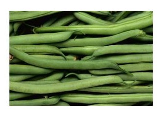 Yeşil fasulye ? /Phaseolus vulgaris