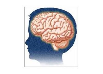 Disiplin, eğitim, beyin ve hastalıklar