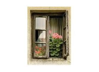 Hayatın penceresi