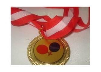 Mansiyon ödülü aldım,Üzgünüm :(
