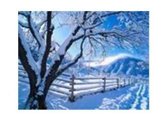 Uzaklarda bir yerlerde çok kar vardı...