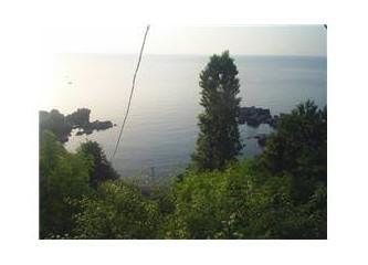 Zonguldak sahilleri