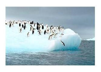 Küresel ısınmanın ganimetleri