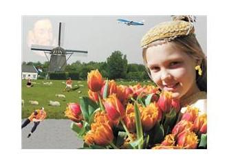 Hollanda temel yerleşim bilgi sınavı