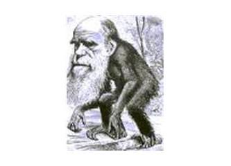 Evrim ve varoluş