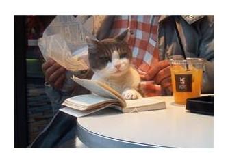 İpucu 8 – Evcil hayvanlar hakkında bilgi edinebileceğiniz kaynaklar