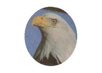 Kuş adam