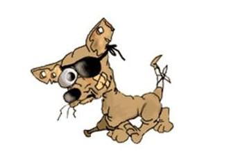 Medyatik Köpek Toni