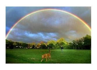 Gökyüzünde Şenlik Var