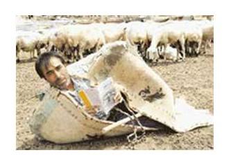 Aslanlar gibi yazıyor şiirini Urfalı çoban şair Ahmet Aslan