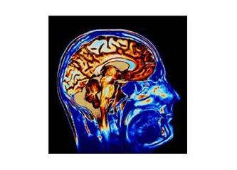 Farkında mıyız beynimizdeki işlemlerin!