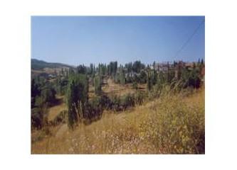 Anadolu' un yüksek steplerinde küçük bir coğrafya küçük bir bakış: Sivrialan