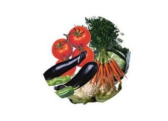 Talebanın müstehcen sebzeleri