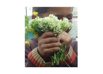 Size çiçek verip, sadece gülümseyebilirim