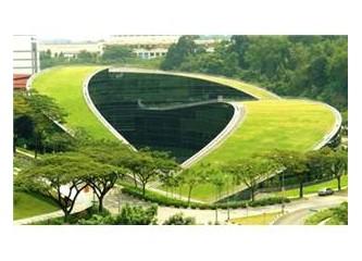 Kanalizasyon sistemi mi yetersiz yoksa yeşil alanlar ve yeşil çatılar mı?