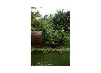 Kerala - Hindistan