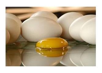 Daha çok yumurta yerseniz ekonominiz ilerler mi?