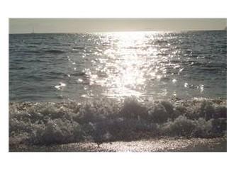 Okyanus Bedenler