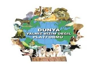 Dünya Hayvan Hakları Günü