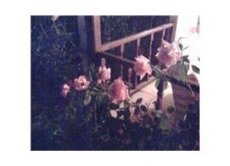 Gecenin sessizliği