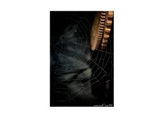 Örümcek hikayesi