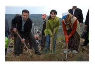 Mersin Valisi Hüseyin Aksoy,Mülkiye 150. Yıl Hatıra Ormanı'na fidan dikti.
